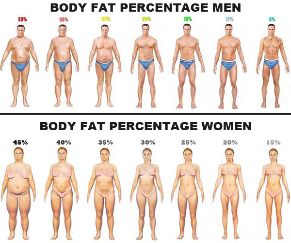 http://johnkuypers.com/blog/my-body-fat-was-27-or-51-flabby-pounds-heres-what-i-did-about-it/