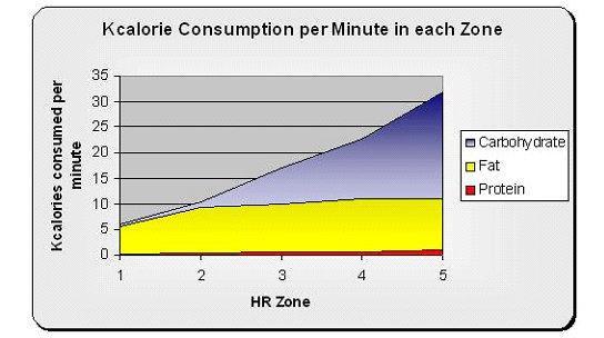 http://vitalvitality.net/the-fat-burning-zone-myth-heart-healthy-month-part-3-of-4/