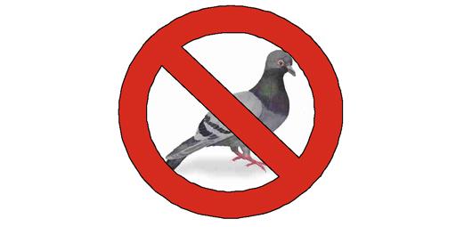 http://www.equip-urbain.com/catalogue/mobilier.php?systeme-de-protection-anti-pigeons-pico&produit_id=599