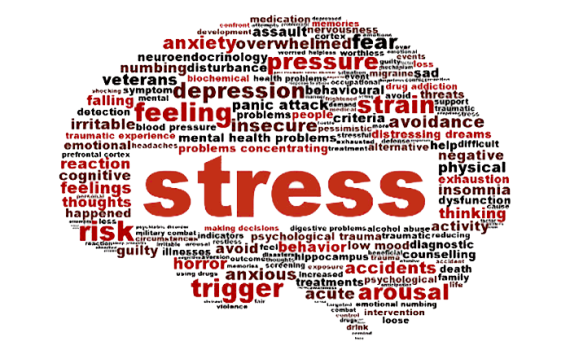 http://www.neuralconnections.net/2014/07/stress-appraisal-and-adaptation.html
