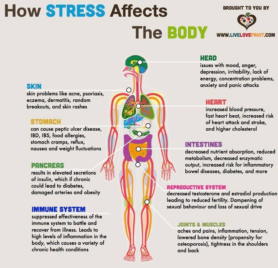 http://www.lifewithoutanorexia.com/2015/05/stress-and-its-affects-on-body.html